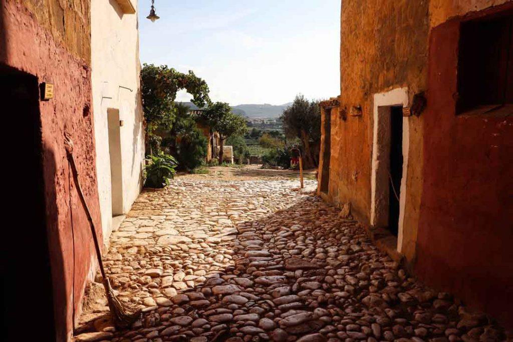 houses in Monte Cofano